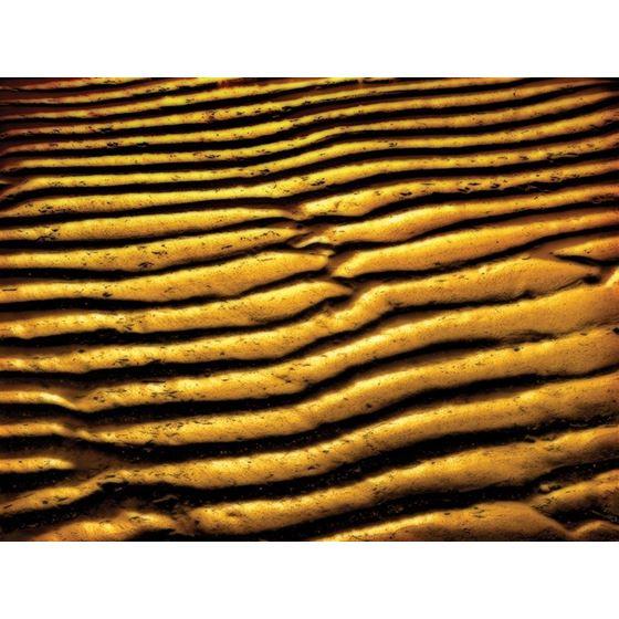 Sand Sand Original Image KG101-10 Type II